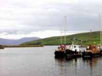 Irish Tours-Dingle Harbor