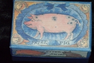 Pig Collections-Box