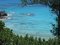 Bermuda Beaches - Church Bay Snorkeling