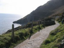 Irish Tiurs-Bray Walk Trail
