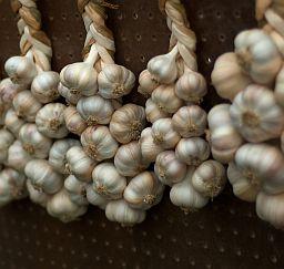 Chinese Cooking Ingredients - Garlic