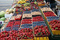 Organic Markets - Malahide