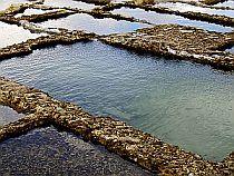 Colonial Pirates - Salt Pools
