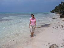 Bermuda Beaches - Hog Bay