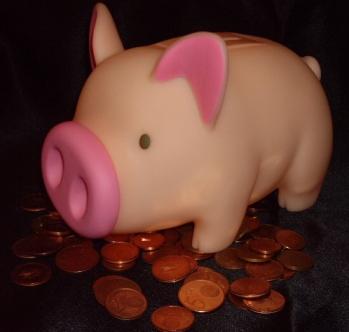 Grunting Piggie Bank