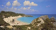 Bermuda Beaches - Horseshoe