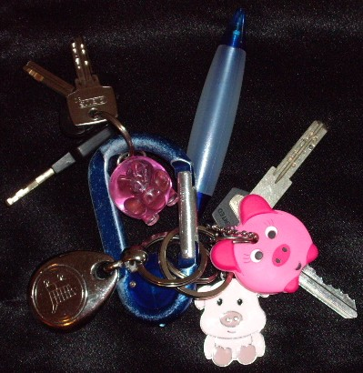Pig Key Cover and other Key Chain Pig Items