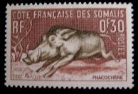 piggie stamp