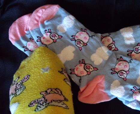 Pig Socks, Schweine Socken