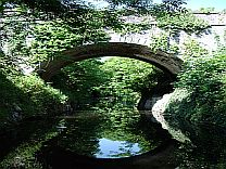 Royal Canal-Green Trees and Bridge
